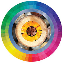 colorful concentric circles with color spectrum around edges